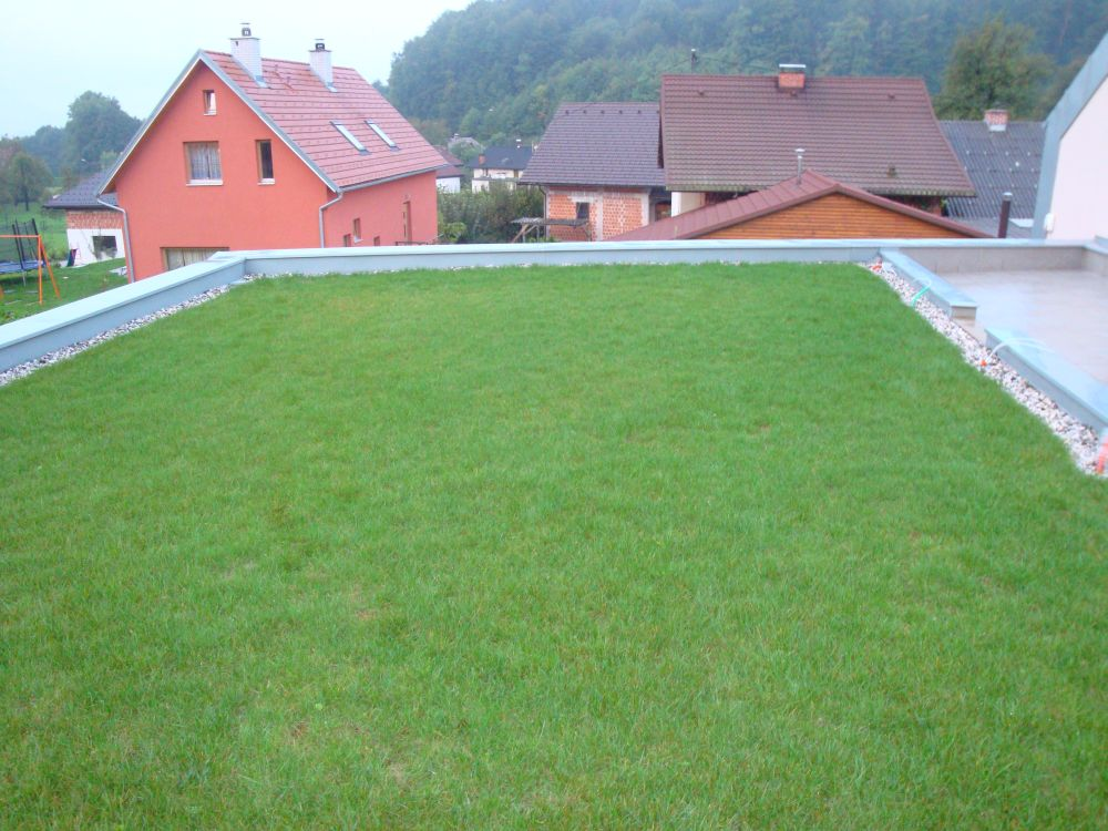Intenzivna zelena streha