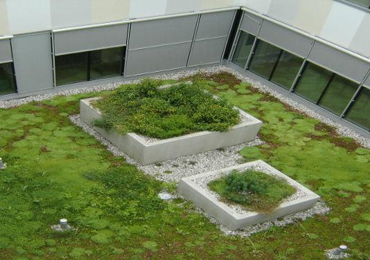 Izvedba ozelenitve ravne strehe