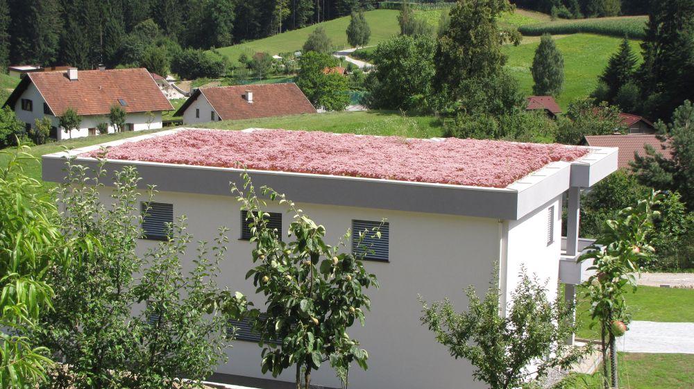 zelena streha na hiši