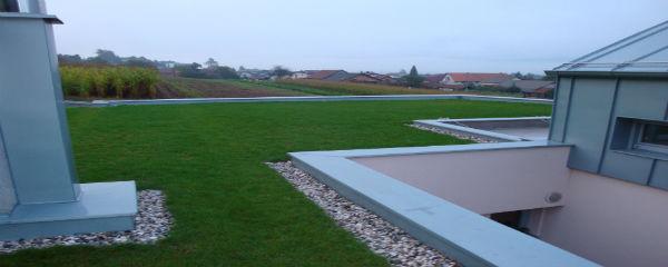 detajl zelene strehe